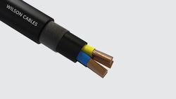 Unarmoured Cable, Nominal Voltage: 220V, Packaging Type: Roll