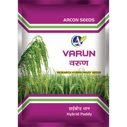 Varun Research Paddy Seeds