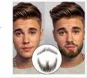 Men  Human Hair Artificial Beard