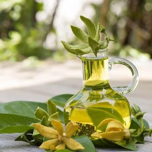 Image result for Ylang Ylang Oil