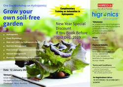 One Day Hydroponics Workshop Services