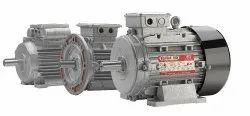 Electric Motor / Induction Motor