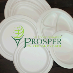 Biodegradable Sugarcane Bagasse Round Plate