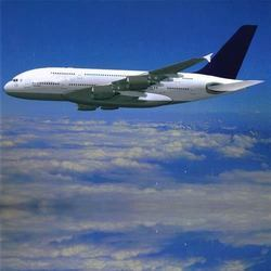 International Air Freight Forwarder Service