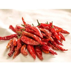 With Stem Indian Dry Red Chilli