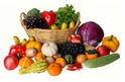 Single Diet Consultation Services