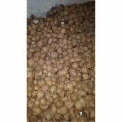 Dried Dehusked Coconut