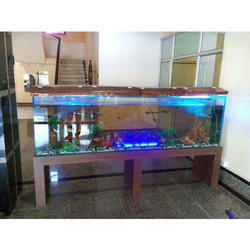 Fish Tanks In Mumbai मछल क ट क म बई Latest