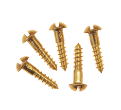 Brass Mirror Screws