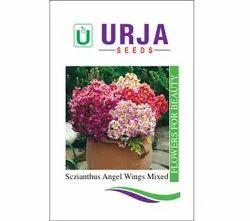 Sczianthus Angel Wings Mxd Seeds