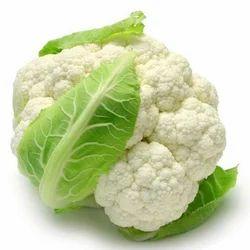 Fresh Cauliflower, No Artificial Flavour, Packaging: Plastic Bag