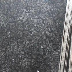Italian Turtle Black Marble