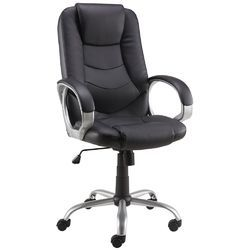 Revolving Executive Chair