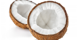 Semi Husked Coconut from India