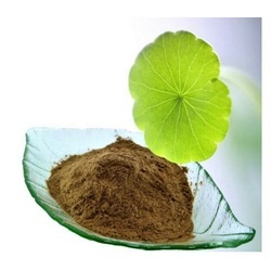 Brhami Centella Asiatica Powder