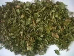Moringa Dry Leaves