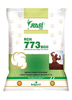 RCH 773 BGII Seeds
