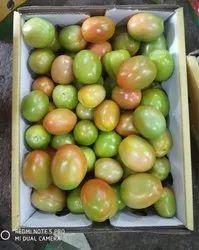 A Grade Tomato