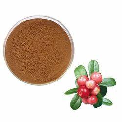 Rosehip Extract Powder