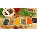 Ayurvedic Pharma Franchise in Guntur