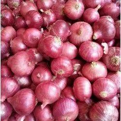 a Grade Tamil Nadu Shallots Onion, Onion Size Available: Small, Plastic Bag