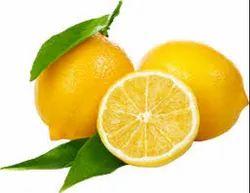 Fruit Juice Concentrate Pulp