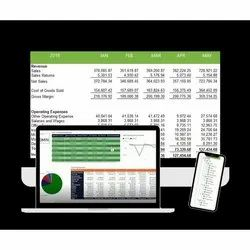 Online/Offline Financial Reporting Software, For Windows
