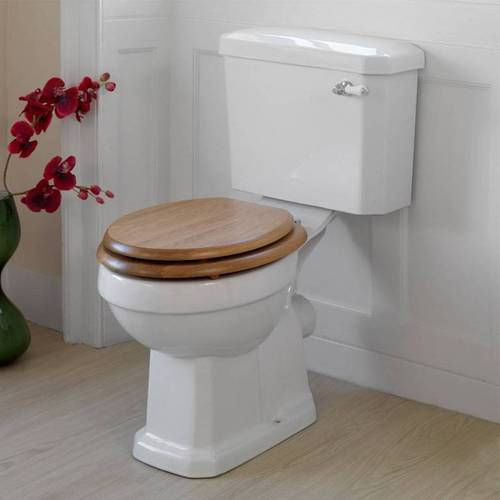 Fancy Toilet Seat
