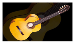 Guitar Playing Course