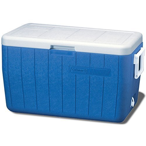 1 50 To 00 Liters Ice Chest Cooler, Mini, Rs 21000 /unit SVR ...