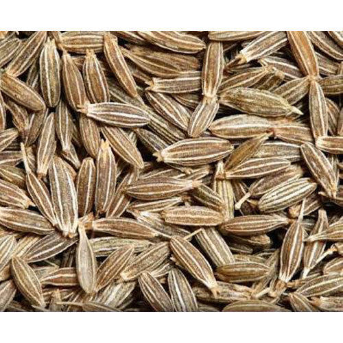 More About What's Cumin Seeds In Tagalog
