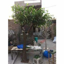 Green Fiber Glass And Silk Leaf Artificial Ficus Tree