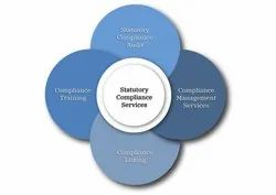 Banking and Finance Consulting Firm Statutory Compliance Auditing Service, Pan India