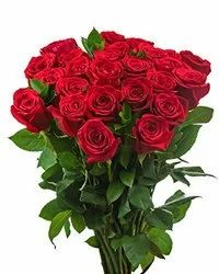 Bouquet Packing Red Rose Flower
