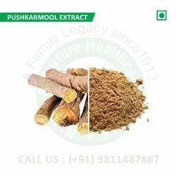Pushkarmool Extract (Inula Racemosa, Puskara, Padmapatra, Kushtbhed, Kashmirr, Gharsa)
