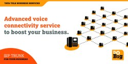 Telecom Site Infrastructure Service Fibre Tata SIP Trunk Services, For Voip, in Pan India