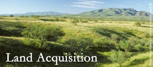 Available For Sale - River Touch Agriculture Land For Sale Service