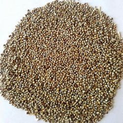 Pearl Millet Seed, Pack Size: 500 And 1000 Kg
