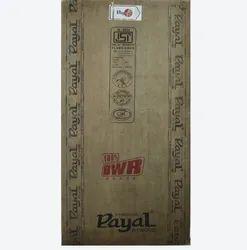 Payal Flush Door