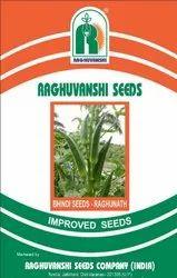 Natural Green Bhindi Seeds, Packaging Size: 100gm