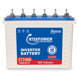 Microtek等2460 150AH逆变电池