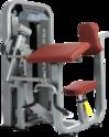 Gym Biceps Triceps Single Station