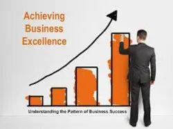Business Excellence Services