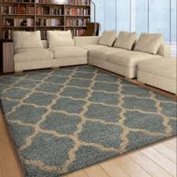 Room Floor Carpet