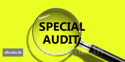 Consulting Firm Retainer Based Special Audit Purpose
