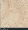 Floor Tiles 800X800
