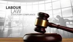 Statutory Compliance Consultant in Sohna Road