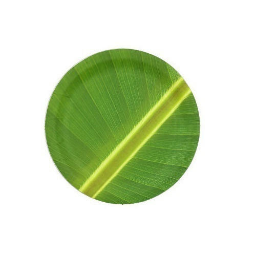 Banana Leaf Paper Plate  sc 1 st  IndiaMART & Banana Leaf Paper Plate - View Specifications u0026 Details of Paper ...