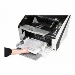 Paper Document Printing Service, Size: Multi Colour