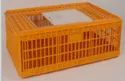 Bird Transport Crates